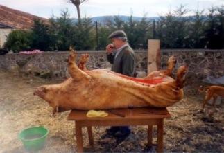 matanza del cerdo vellosillo 1982 V.jpg